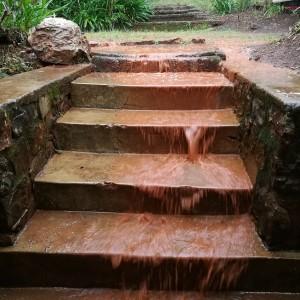 Vand, regn og regnvand