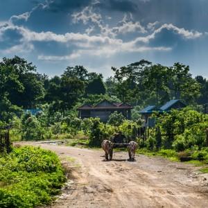 Danmission engageret i et nyskabende projekt i Cambodja