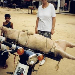 På vej i Cambodja